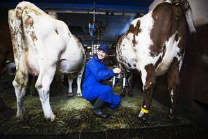 Sofia Kjellström kommer från Stockholm men bor i Östersund. Hon har alltid varit intresserad av hästar och vill gärna hjälpa katastrofdrabbade djur.
