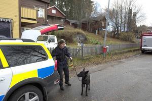 Polisen Elin Jansson gick tillsammans med hunden Aico igenom terrängen utanför det nedbrunna huset för att försäkra sig om att den saknade personen inte fanns där.