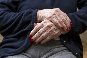 Debattörerna vill öka valfriheten för Södertäljes alla äldre.