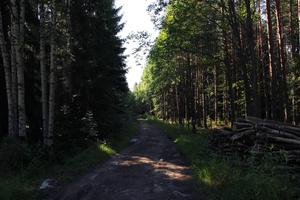 Denna väg tar vid när Storbyns väg slutar. Den blev klar omkring 1960 och var tänkt att användas främst för att forsla grus.