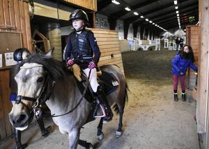 Munsboro Toffee Pop hoppade över gratisäpplet efter sin insats i ponny-SM.