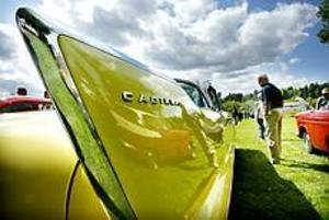 Foto: GUN WIGH\nFena på bilar. Experterna, och de var många, kunde botanisera bland skönheterna i Högbo.