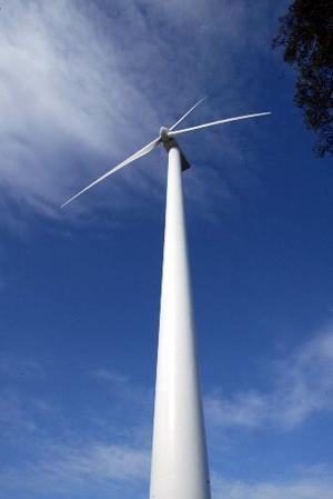 Ut miljö- och räddningsnämndens synvinkel kan man få bygga vindkraftverk väster om Glombo.