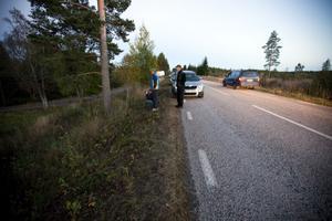 En hel del nyfikna bilister stannar sina bilar vid vägkanten mellan Järbo och Kungsfors. De spanar ut över åkern i hopp om att få syn på björnen som synts till i närheten. På måndagkvällen höll den sig dock undan.