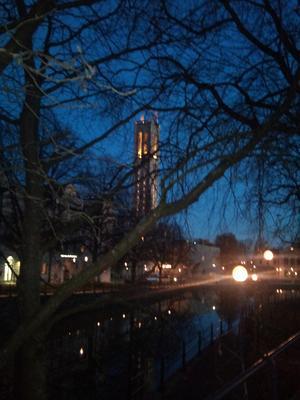Jag passerade Storbron och såg hur vackert det var med dom svarta trädgrenarna, mot blå skymningshimmel. Sen ljuset från Stadshustornet och lycktorna som speglade sig i vattnet i Svartån.