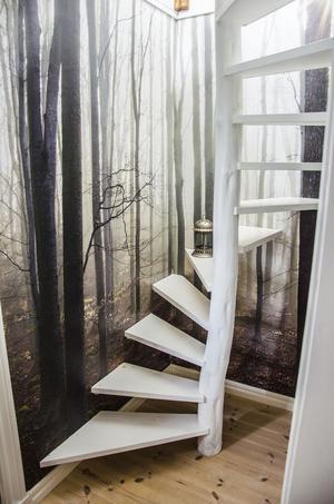 Är det en trappa man ska upp för eller in i en kuslig men drömlik skog?