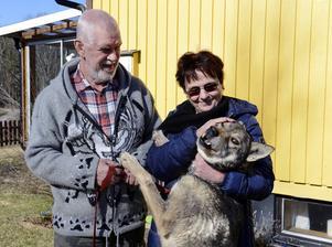 Mats Letrell och hans sambo Annica Sjöholm har blivit djupt fästa vid hunden.