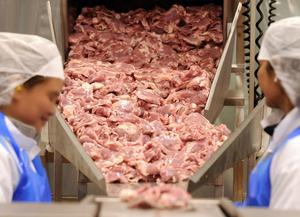 En av många svenska kycklingindustrier finns i Mörbylånga kommun på Öland.