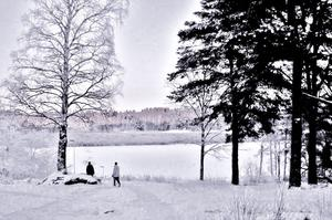 På Björnö tog vi en långpromenad trots det kalla vädret. Temperaturen kröp ned till ca 15 minus.