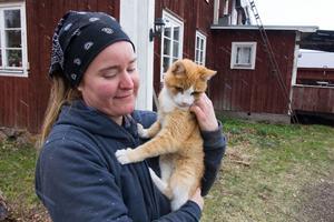 Assar, som är nästan blind, är en av två katter på gården.