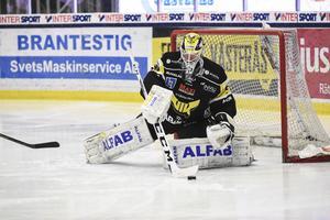 Marcus Dahlbom har fått känna på Hockeyallsvenskan under två säsonger. Nu är han VIK:s sista utpost i jakten på en plats i kvalserien.