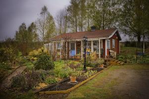 Ray och hans familj köpte huset i Ribbohyttan för att ha det som fritidshus. Med tiden har Ray byggt ut både huset och sin trädgård.