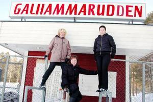 Anita Kårwik, Ann-Marie Löjdahl och Lena Dillner ska blåsa nytt liv i Svensta marknad.