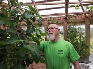 Sedan avtalspensioneringen 2010 bedriver Nils Jisfält hobbyodling av grönsaker både på trädgårdsland och i växthus. Hönshus, liksom gårdsbutik, finns också på den gamla gården i Stöde där frugan Ingrid är uppvuxen.