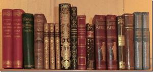 Bokskatten i Stadsbibliotekets donationssamling innehåller många reseberättelser.   Foto: Weste Westeson