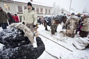 Natasha Hoffman från Östersund fotograferade 4,5-åriga dottern Elisabeth som vågade sig fram till den nordsvenska brukshästen Kajsa.