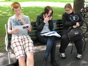Från vänster: Alexander Malmqvist, Amanda Jonsson, Annie Ljungström NV08. Bild: Privat