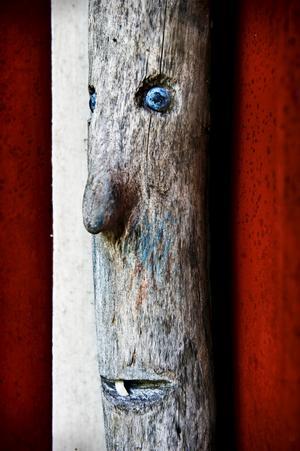 Den som tittar lite noga, hittar alla möjliga figurer intill huset.