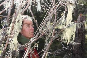 Malin Sahlin ser det som positivt om uppmärksamhet kring hotade gammelskogar leder till att värdefull natur räddas.