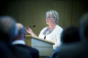 Siw Mickelsson representerade Rengsjöborna vid allmänhetens frågestund.