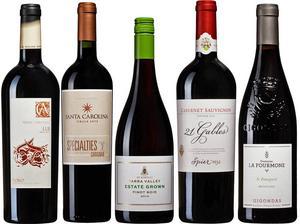 Många riktigt bra röda viner finns att hitta i september månads nyhetssläpp. Här är fynden och de väl prisvärda nyheterna. Även några lådor håller god klass.