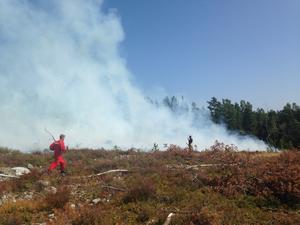 Skogsbrand på hygge i Utvik, öster om Söderhamn