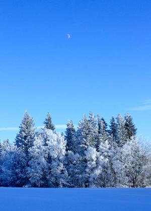 Bilden är tagen under en kall men vacker februaridag på Körfältet. Jag som tagit bilden heter Niklas Dyrelius.