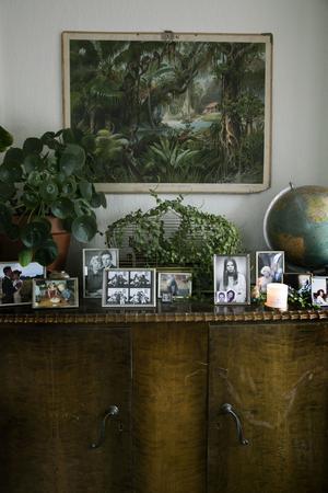 Hemma hos Sofia Stolpe är den stora Faluvåningen  inredd med över 80 gröna växter