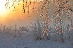 Jag har många favoritbilder, dessa är också tagna vid -18 i Krokomsviken, jag gillar hur man vid samma fototillfälle kan få sådan variationer i ljuset på bilden