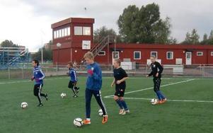 I höst är elitfotbollsprogrammet på Karlfeldtgymnasiet fullt utbyggt när ytterligare femton elever börjar. Fr v Eddie Hchicho, Måns Gustafsson, Martin Ekberg, Moa Hermansson och Lina Hurtig som gått vidare till Umeå. FOTO:PRIVAT