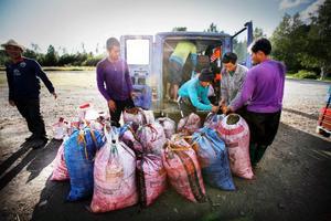 Avgasröret gick sönder på de skumpiga grusvägarna. Var thailändarna har plockat alla blåbär? Det berättar de inte. Deras bästa bärsställen är hemliga.
