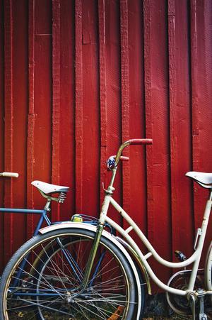 Det gäller att inte renovera sönder sin sommar. Det måste finnas tid för sköna cykelturer och slappande i hängmattan.