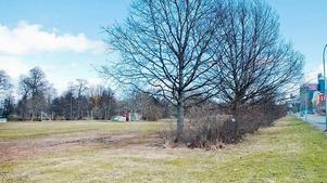 Ungefär här, vid Åbyparken, ska det planerade utebadet ligga, när det väl blir av.