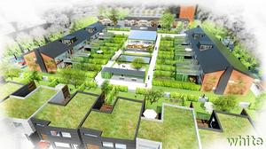 Kvarteret vid Visgatan kan bli först ut, om Öbos styrelse ger klartecken till förslaget om renovering och ny- och ombyggnad.
