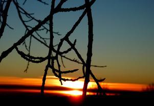 Soluppgång en tidigt morgon vid skidspåren i Klackberg, Norberg