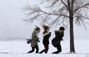 Ju mer det blåser och desto kallare det är, ju större effekt får vindens kylningseffekt.