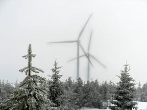 En vindkraftpark i Meråker skulle påverka delvis rennäringen.