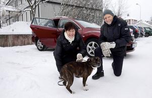 Berndt Östlund och Kerstin Sjöstrand med skotträdda hunden Stella har tröttnat på fyrverkerierna. Därför åker de ner och firar den på Arlanda. ''Det här har varit vår sämsta dag, men nu kommer vi äntligen kunna få lite ro. Vi kommer åka ner nästa år också.''