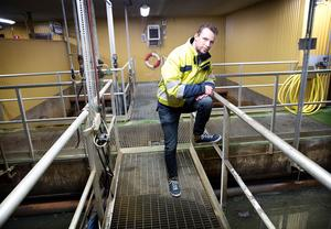 Marcus Birgersson kommenterar oljesabotaget vid reningsverket i Hölö.