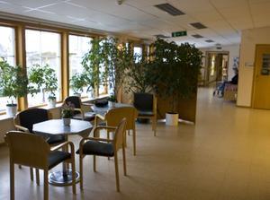 Mjällomsföretaget Gerdins har blivit ny huvudägare av Måviken, med dess 17 anställda.