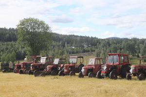 Traktorer i långa rader.