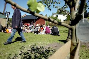 Träder ut. Lennart Eriksson var inkallad för att plantera päronträdet – trodde han. Men trädgårdsproffsen hade förekommit honom.–De litade väl inte på att jag skulle klara av att plantera, var hans kommentar.Bild: GÖRAN KEMPE
