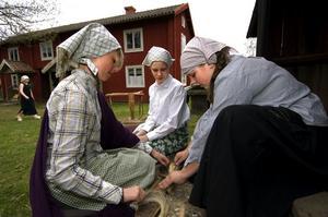 I Linnés fotspår. Julia Hane, Moa Wikblad och Matilda Larsson kan nu konsten att häckla lin.
