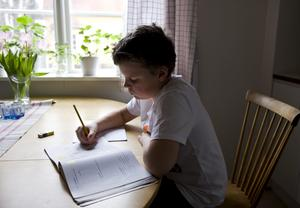 Alla ska nå målen. Vi vill införa läxläsning på skoltid ledda av pedagoger så att alla barn får rätt till samma förutsättningar gällande inlärning, skriver debattörerna. (Pojken på bilden har inget samband med artikeln.)foto: scanpix