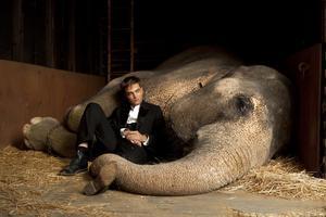 Elefantmannen. Ja, nog har Robert Pattinson i rollen som den vilsne och kärlekskranke Jakob ett skönt förhållande till både djur och en viss kvinna,