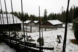 Tre sorters fäbodar finns i dagens kulturlandskap: de som brukas som kompelement i modernt jordbruk, de som är ruiner eller fornminnen, samt de som blivit kulturhistoriska dokument, liksom Dyrvallen.i Norrbo.