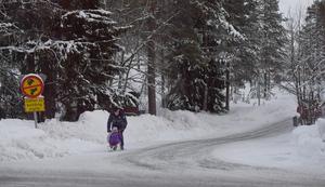 Vargstigen stängd för barnens miljö, men än har inte alla föräldrar lärt sig vad skylten betyder och en bil på väg till dagis svänger just in.