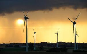 Solnedgång och regnmoln bakom vindkraftverken i Gårdstånga i Skåne. Foto: Johan Nilsson/SCANPIX