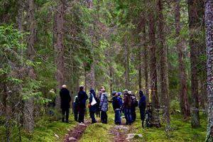 Många har agerat för att rädda Trollputten. Förra veckan gjordes en aktion i skogen av bland andra Naturskyddsföreningen och Miljöpartiet.