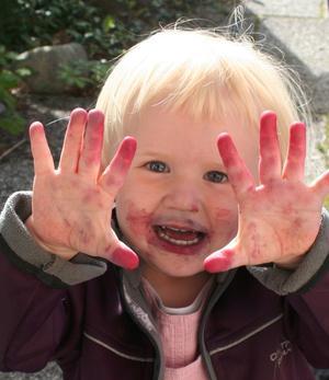 Linnéa har varit på utflykt med mormor och morfar och plockat blåbär.